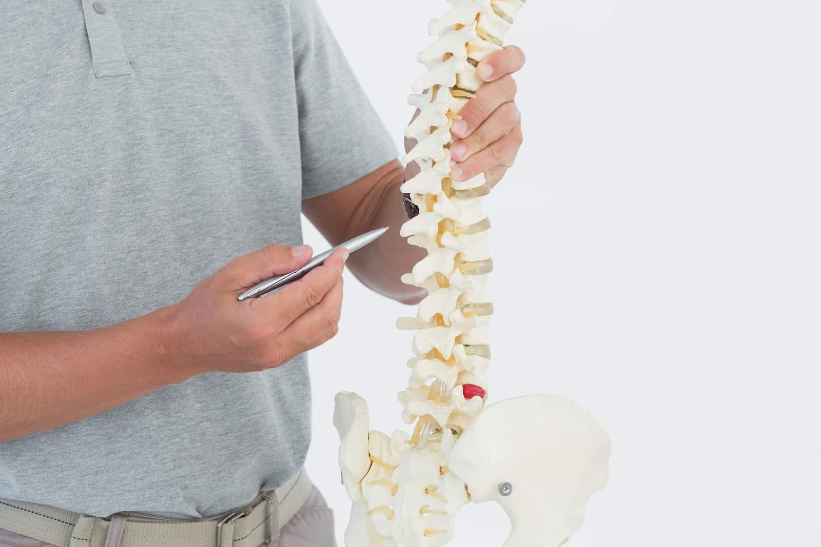 a-propos-de-la-chiropratique